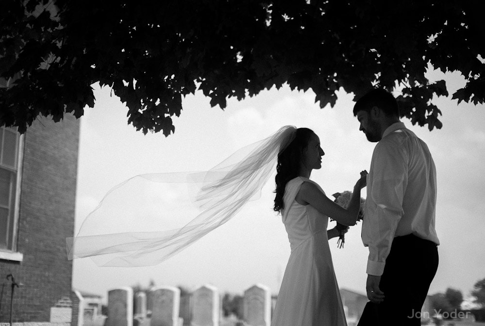 bride flowing veil